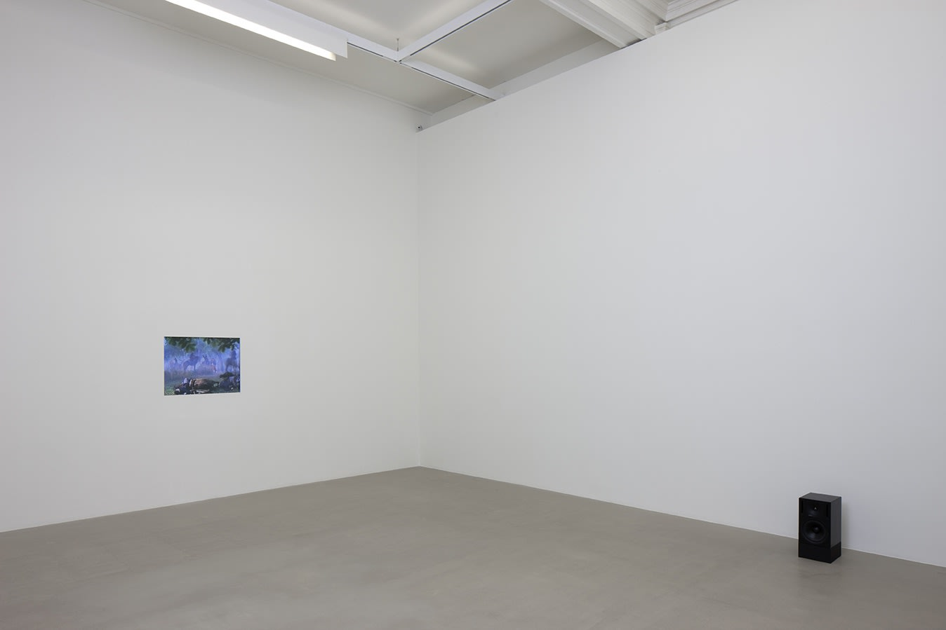 A small screen embedded in the wall and a black speaker sit in a white room. The screen, barely visible, displays horses and foliage.