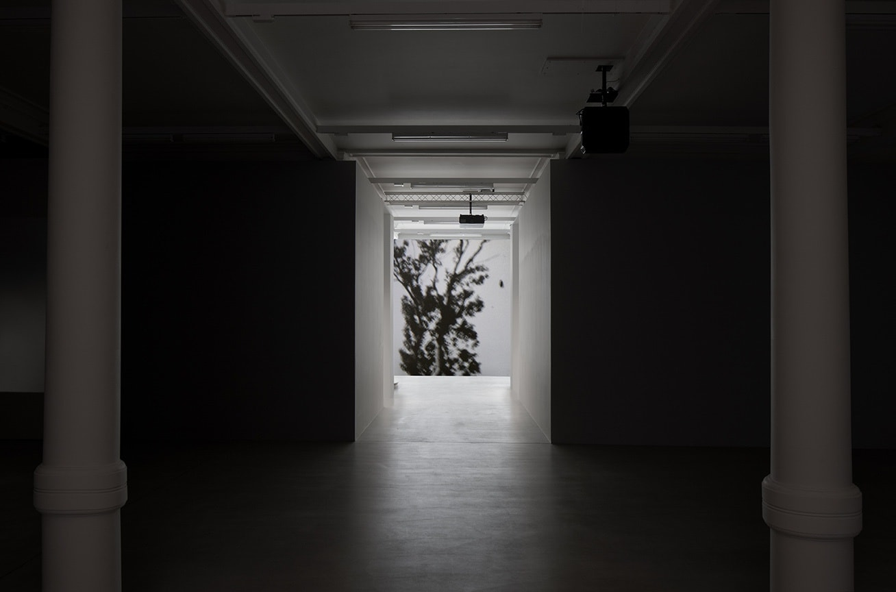 A black and white image of a tree illuminates a hallway that leads to a large darkened room with 2 white columns.