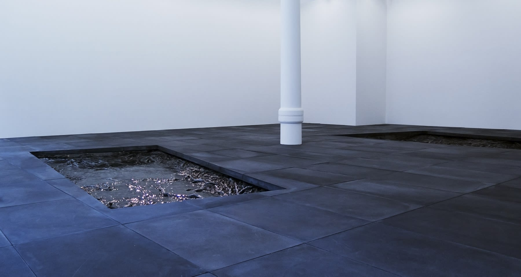 2 rectangles are cut out of a dark grey tiled floor in a large white room. They are filled with cast roots and a surface resembling water. 1 white column stands between the holes.