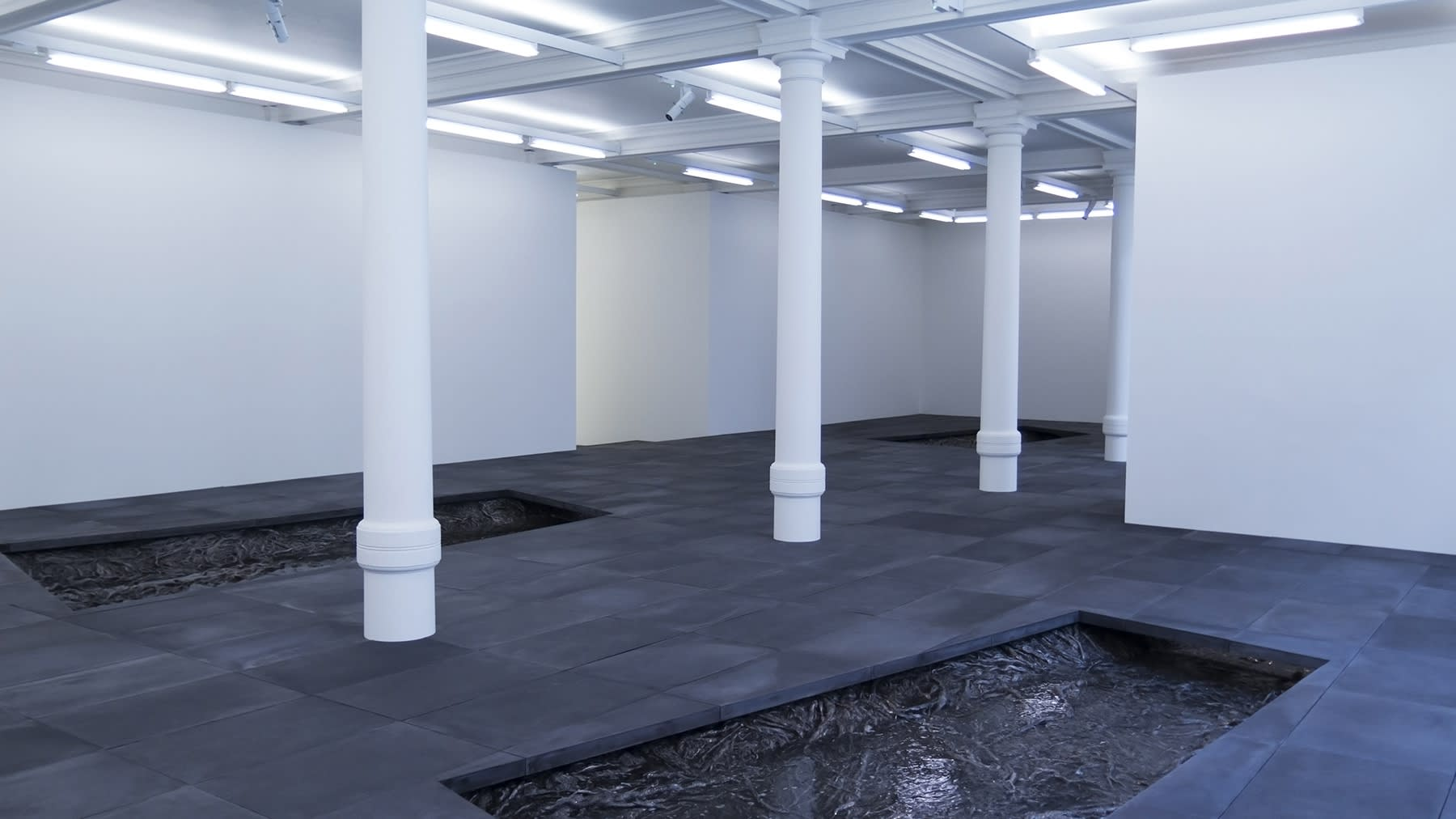 3 rectangles are cut out of a dark grey tiled floor in a large white room. They are filled with cast roots and a surface resembling water. 4 white columns span the length of the room.