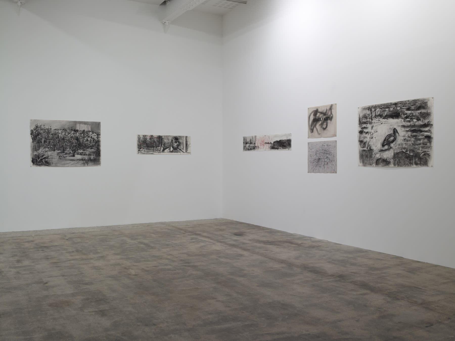 Tacita Dean, William Kentridge, Gabriel Orozco, Giuseppe Penone, Niele Toroni, Lawrence Weiner