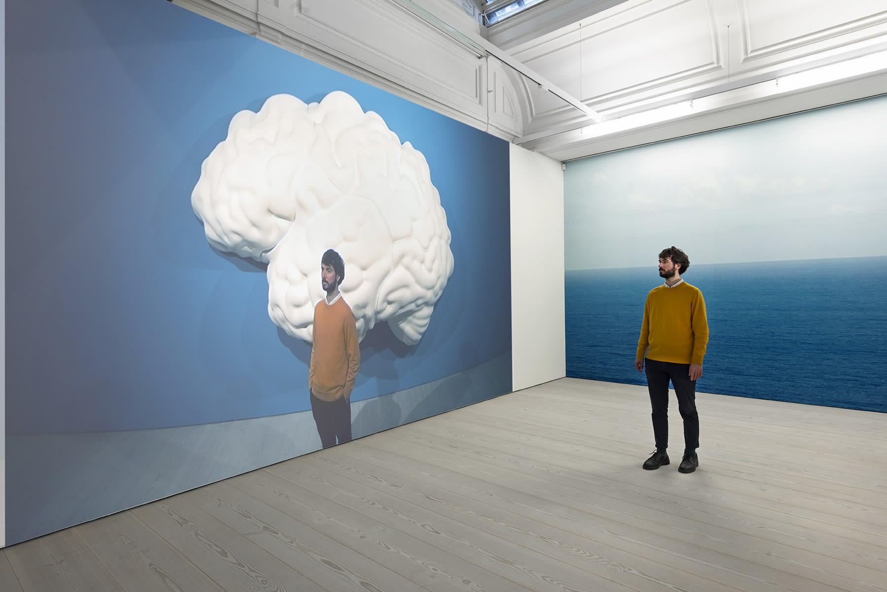 John Baldessari Brain/Cloud (Two Views)