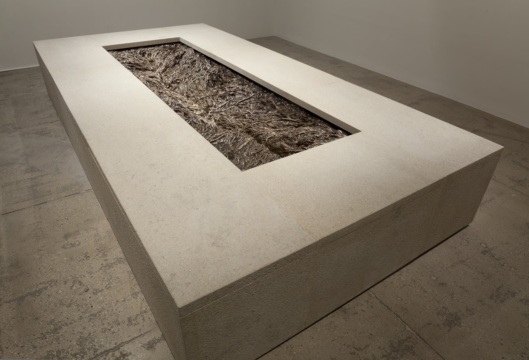 A rectangular cut away reveals a system of cast roots in a large concrete slab.
