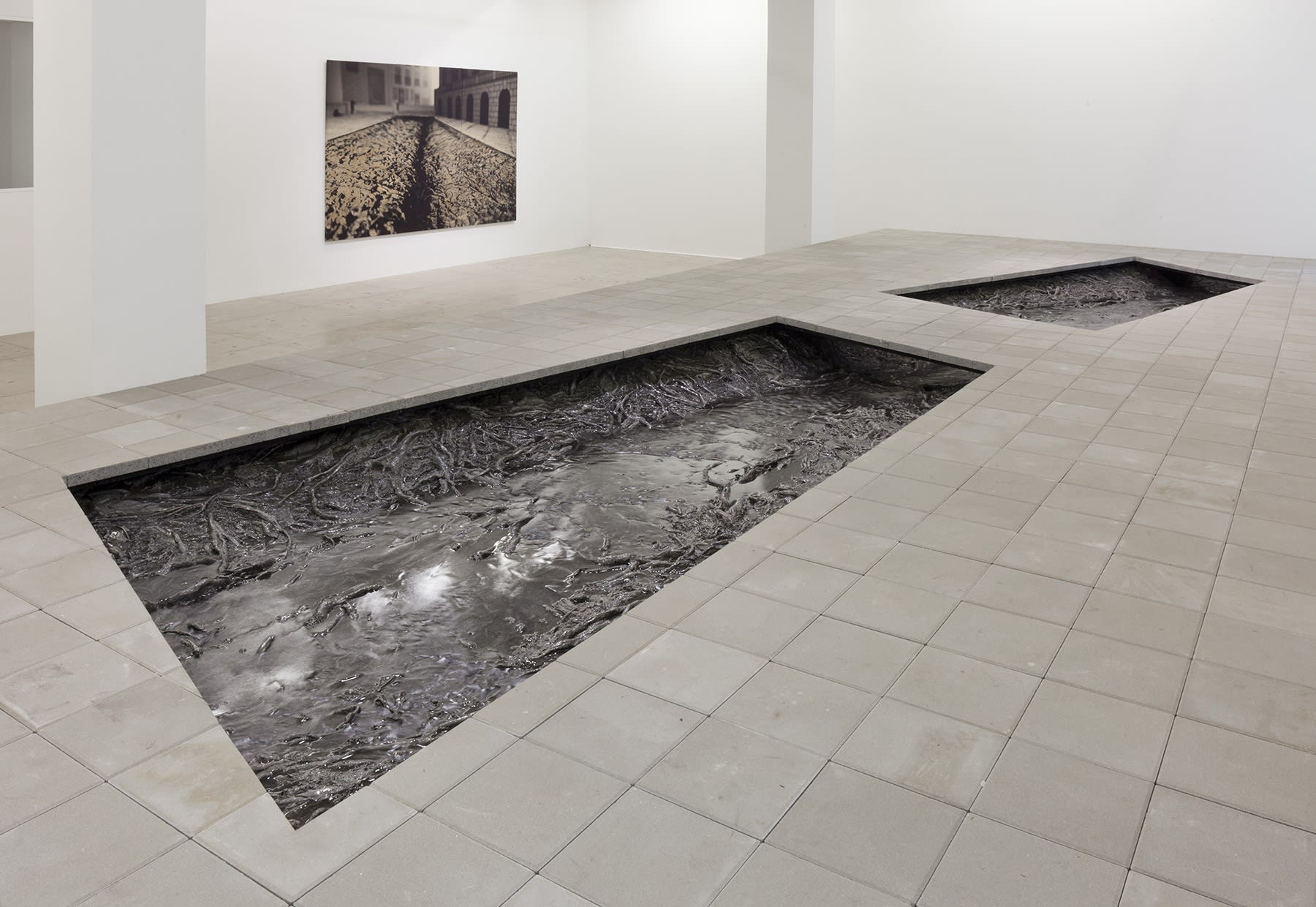 2 rectangular cutouts in the floor reveal a system of shiny, cast roots that appear to be in water.
