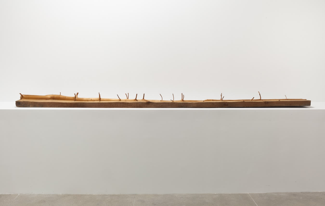 Giuseppe Penone A Question of Identity
