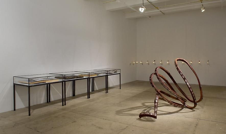 Installation view of a rusted metal sculpture, vitrines, and light installation in a gallery space.
