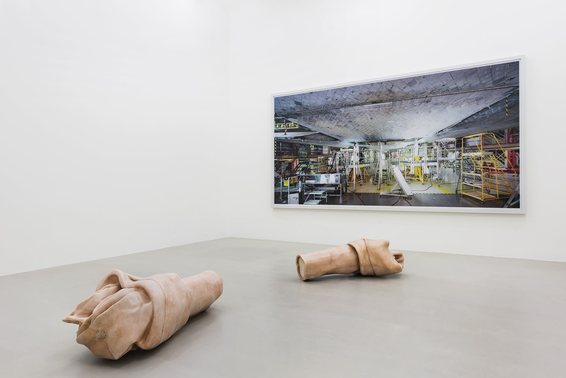 A large color photograph hangs on the wall behind a sculpture of a large rawhide bone cut in half.
