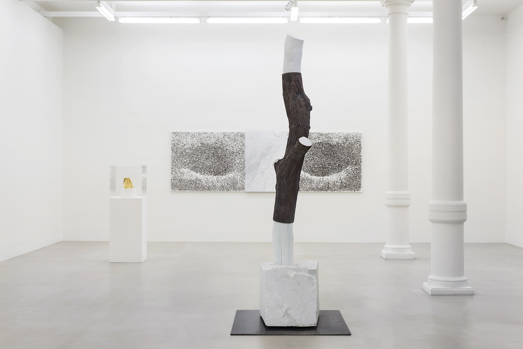 A sculpture of the cut section of a tree trunk sits in the center of the gallery.
