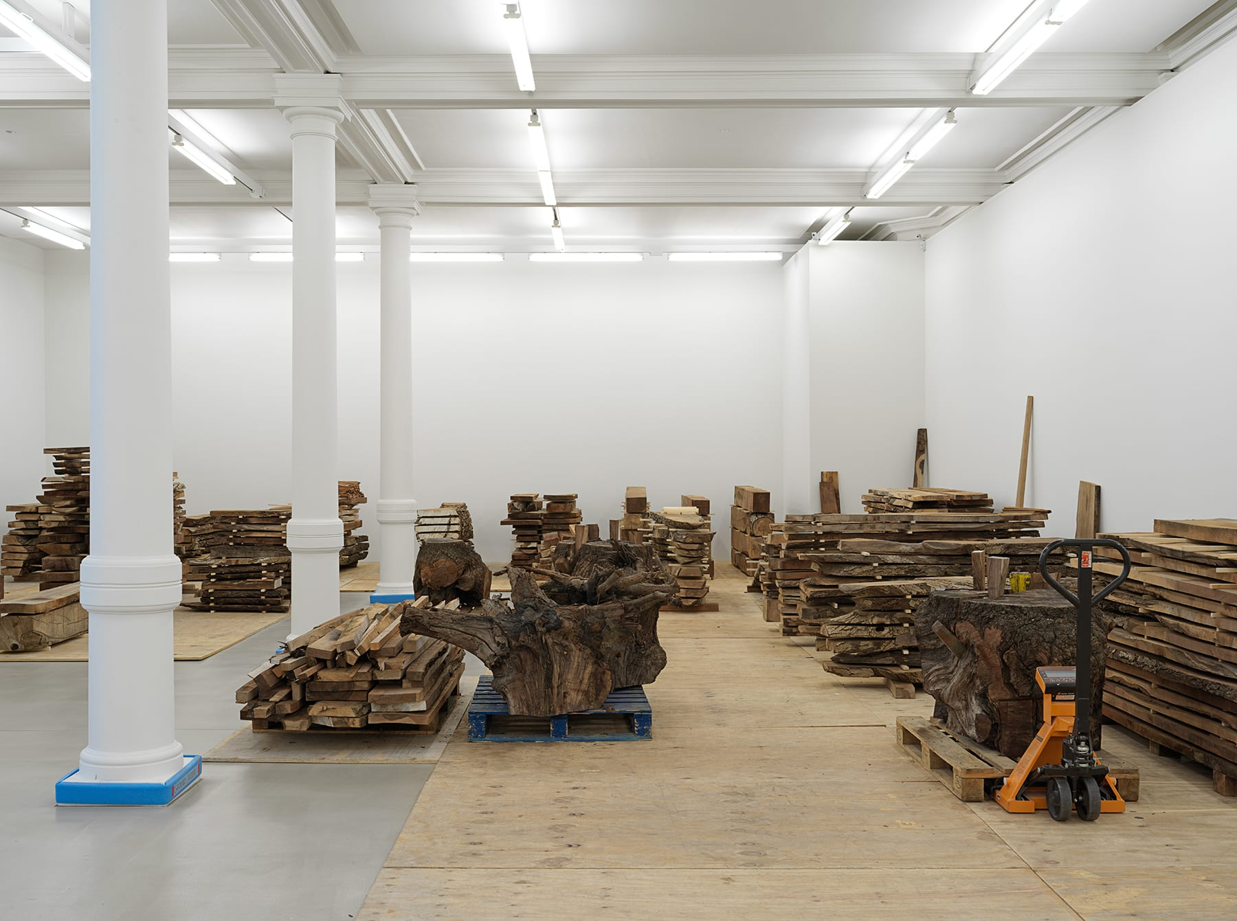 A gallery room filled with separate stacks of raw lumber.