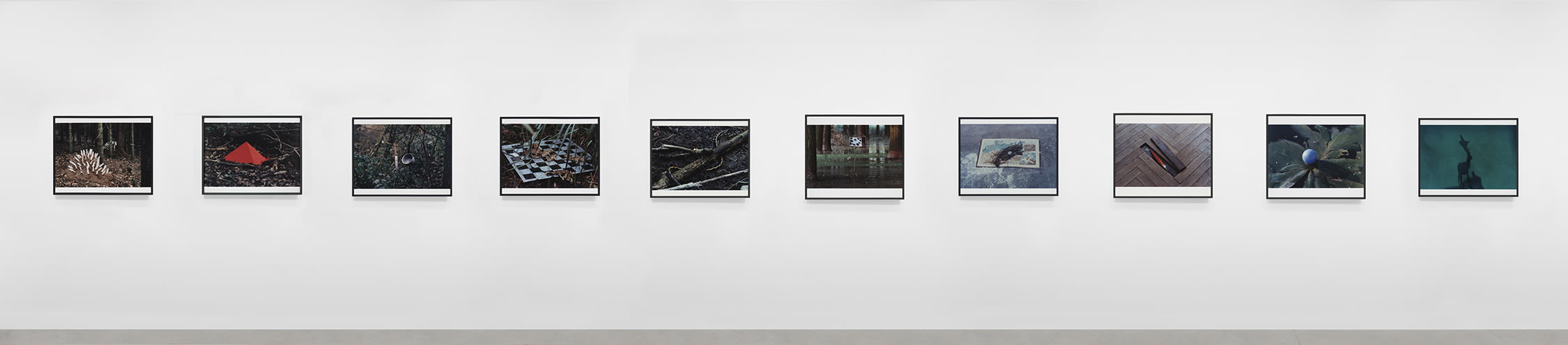 a series of photographs by Lothar Baumgarten
