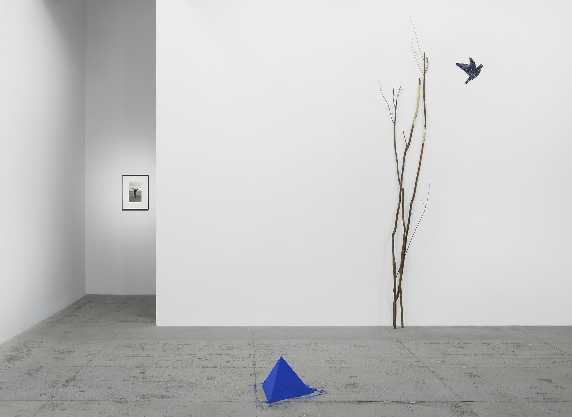 installation view of works by Lothar Baumgarten: a tree branch on a wall with a bird flying towards it; a blue triangle made of powder on the floor