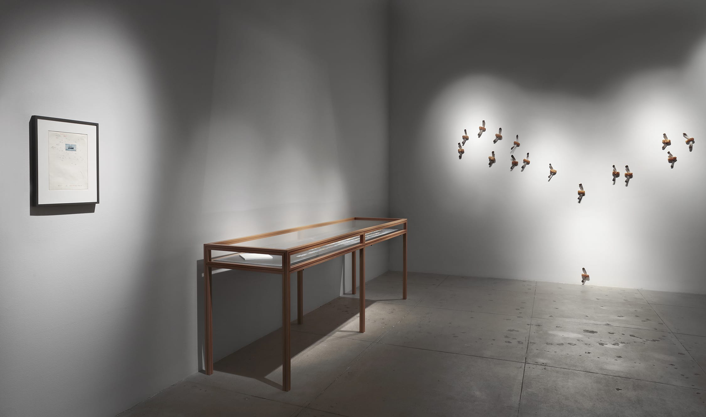 Installation view of Lothar Baumgarten exhibition, containing depictions of mosquitoes out of bread (right).