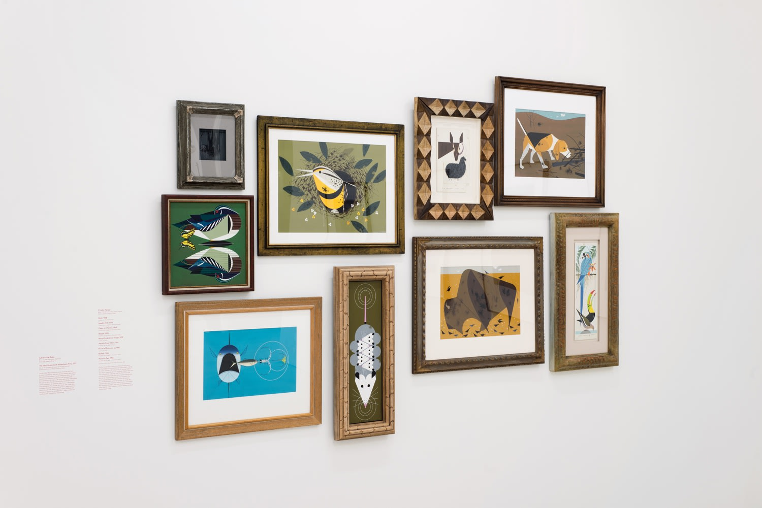 Installation of numerous abstract animal prints on wall.