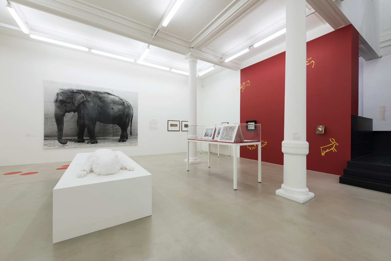 Gallery view, on the left wall is a large image of a elephant while the right wall is red with deer drawings.