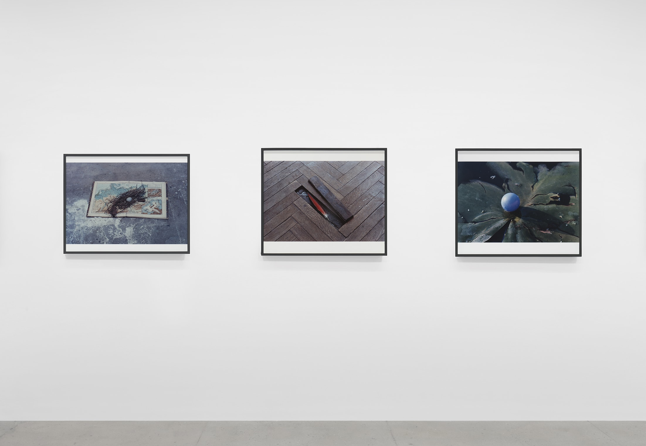 Installation view of Lothar Baumgarten's exhibition. Image contains 3 photographs.
