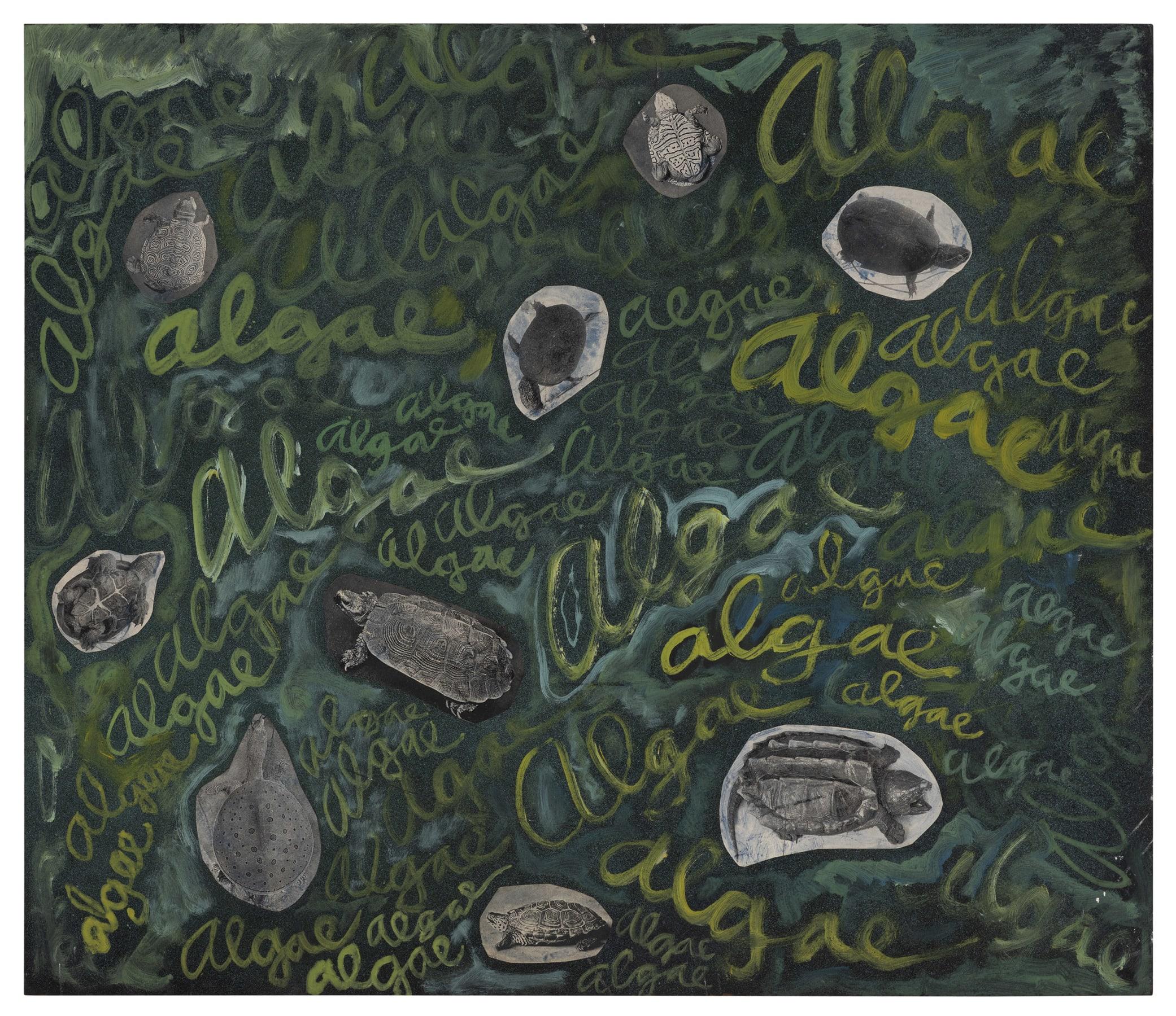 Robert Smithson. Algae, algae, ca. 1961-1963. Paint and photo collage on Masonite. 23 3/8 x 27 1/4 x 1/4 in. (59.3 x 69.1 x 0.6 cm). ©Holt/Smithson Foundation, Licensed by VAGA at ARS, New York.