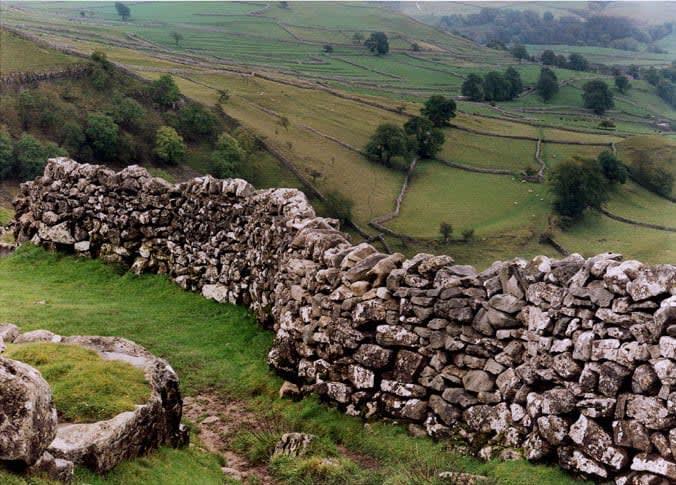A stone wall on a vast green field.