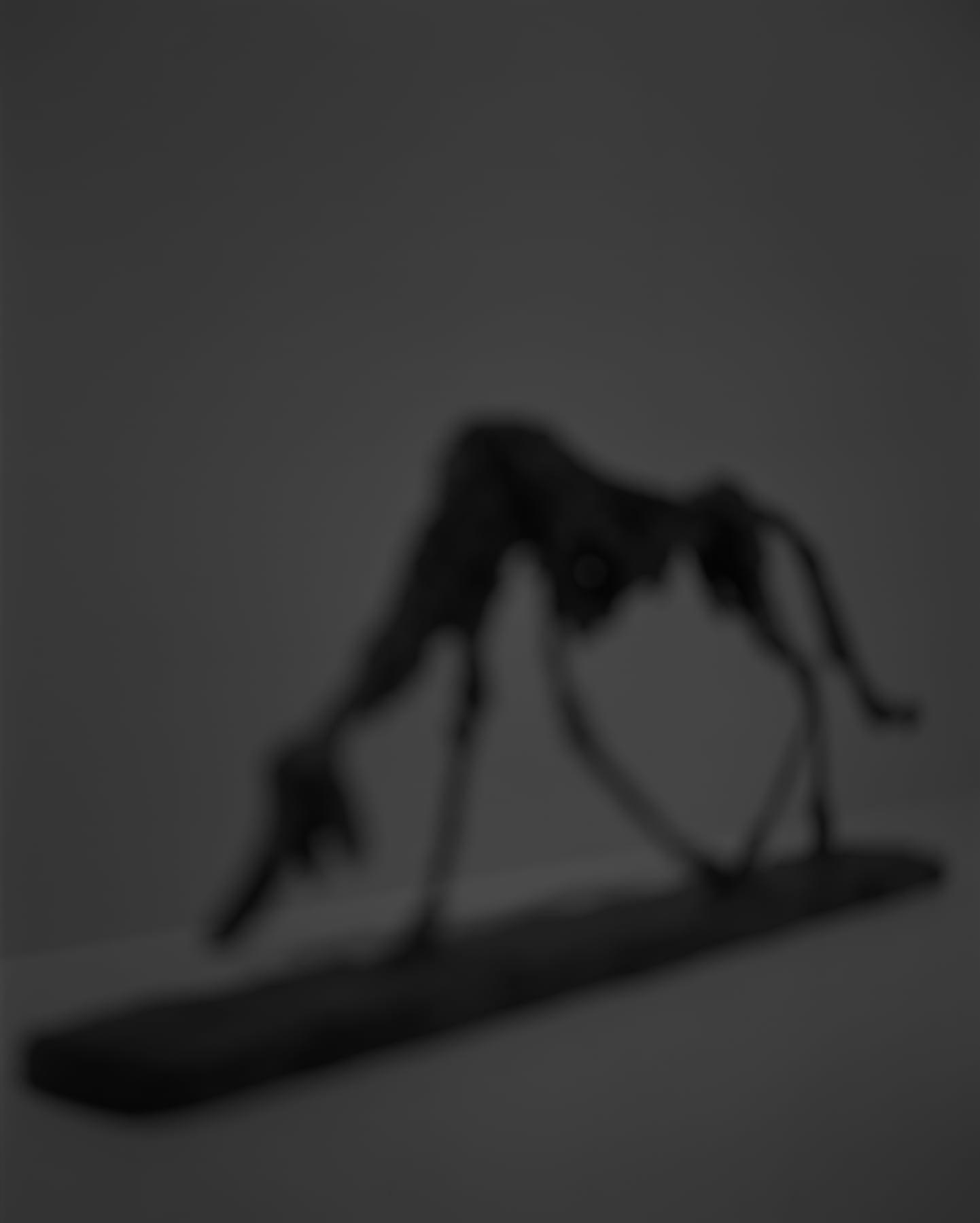 Hiroshi Sugimoto, Past Presence 087, Dog, Alberto Giacometti, 2018