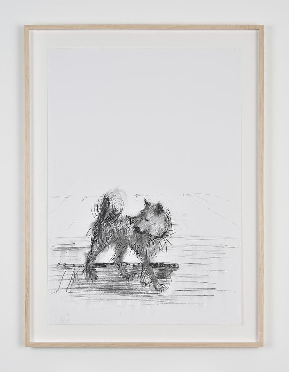 Sabine Moritz, Dog, 2019