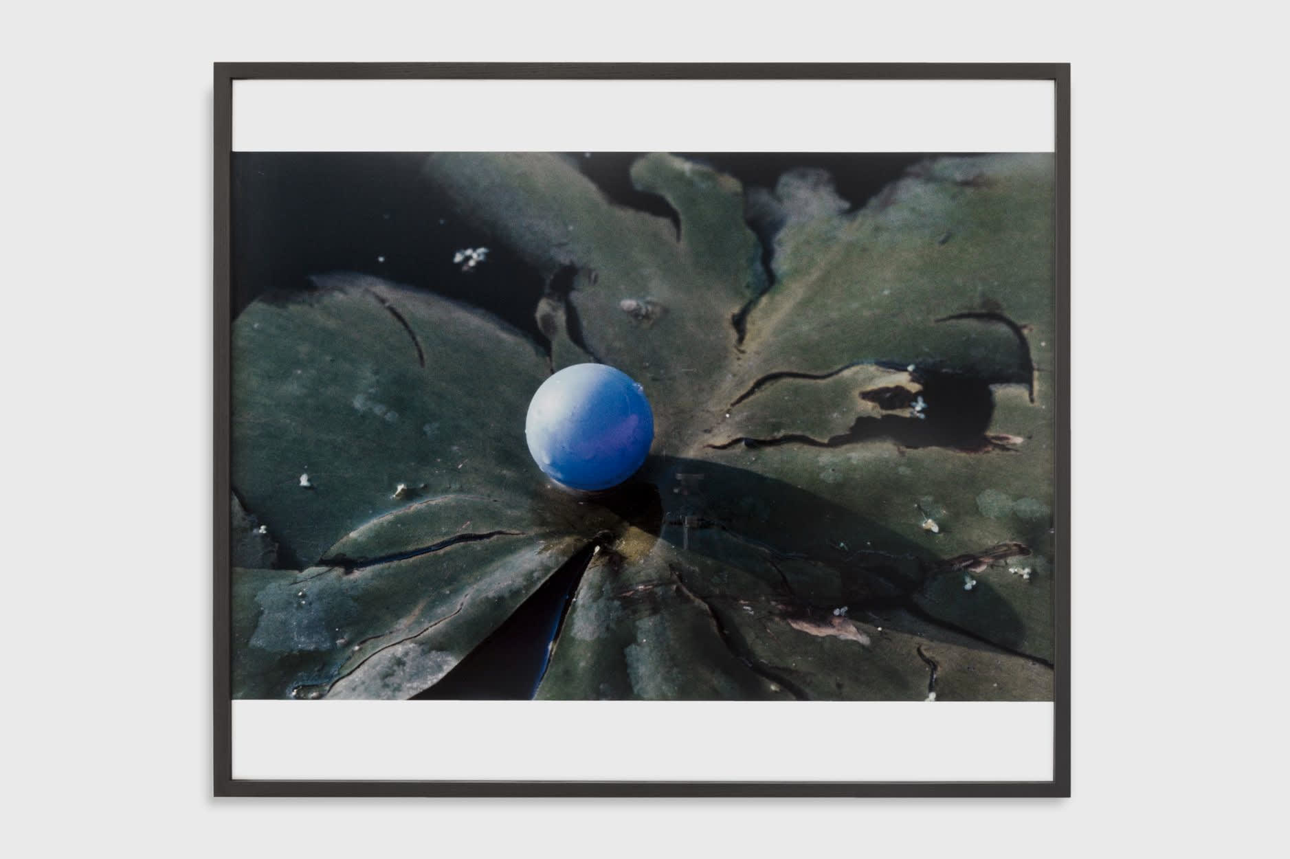 Lothar Baumgarten, Pupille (Eye ball), 1968