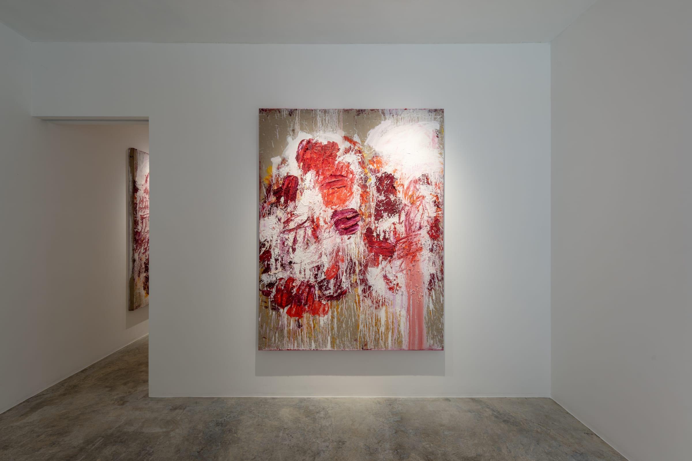 Aida Tomescu Into a carpet made of water