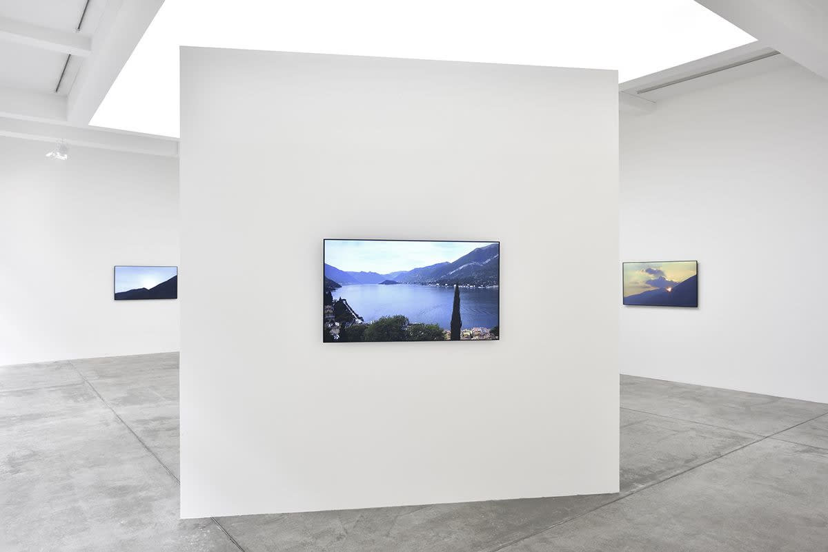 Gallery installation image of three screens depicting nature scenes.