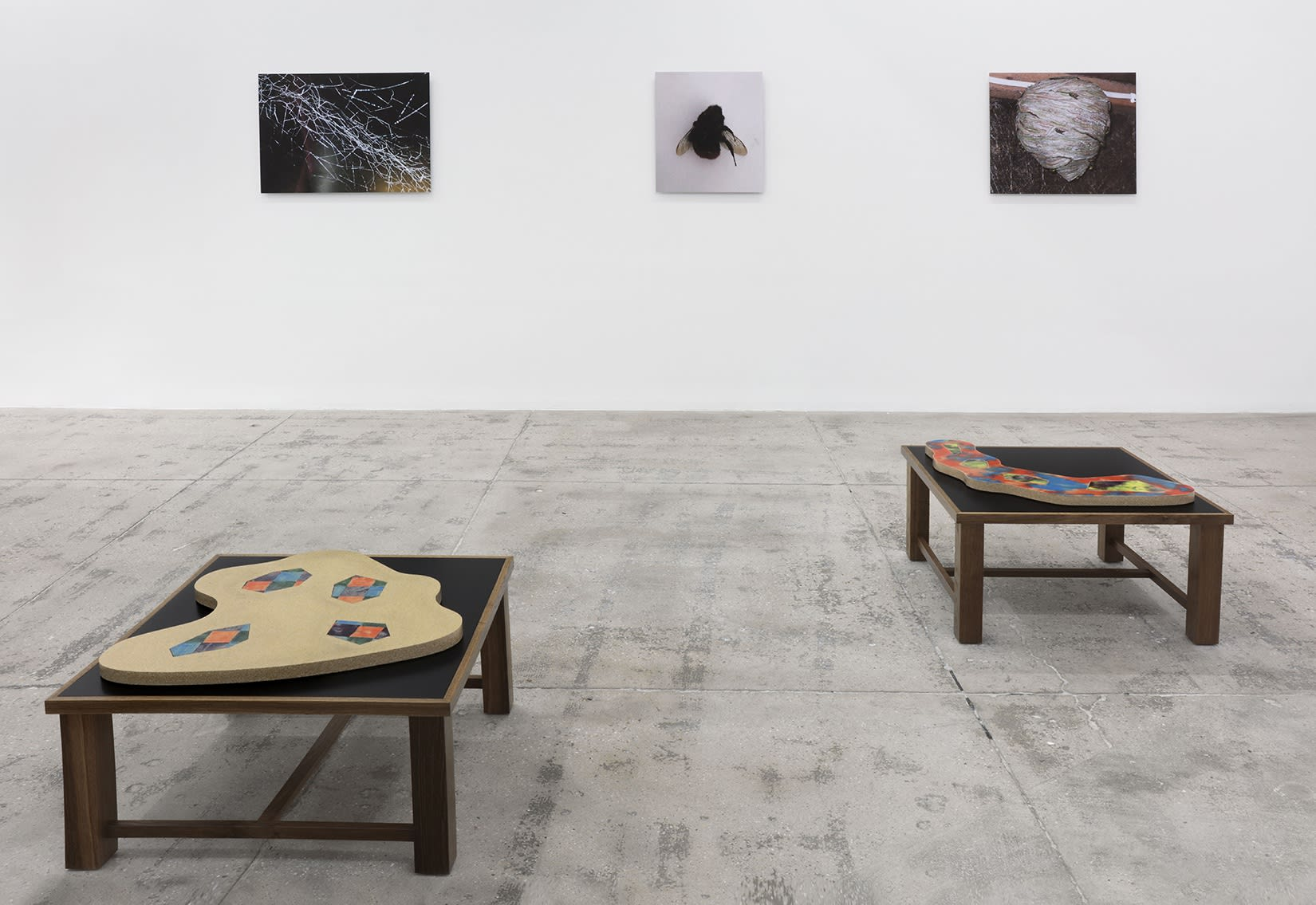 3 photographs hang on a white wall and 2 flat sculptures sit on wooden platforms in the foreground.