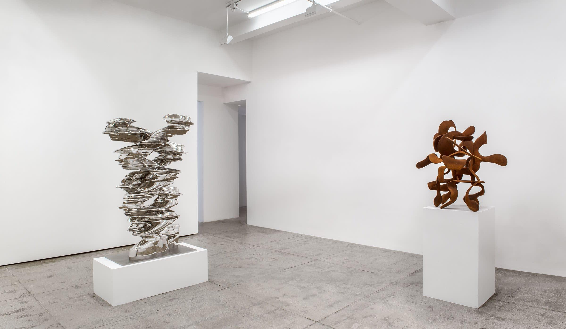 Tony Cragg Recent Sculptures