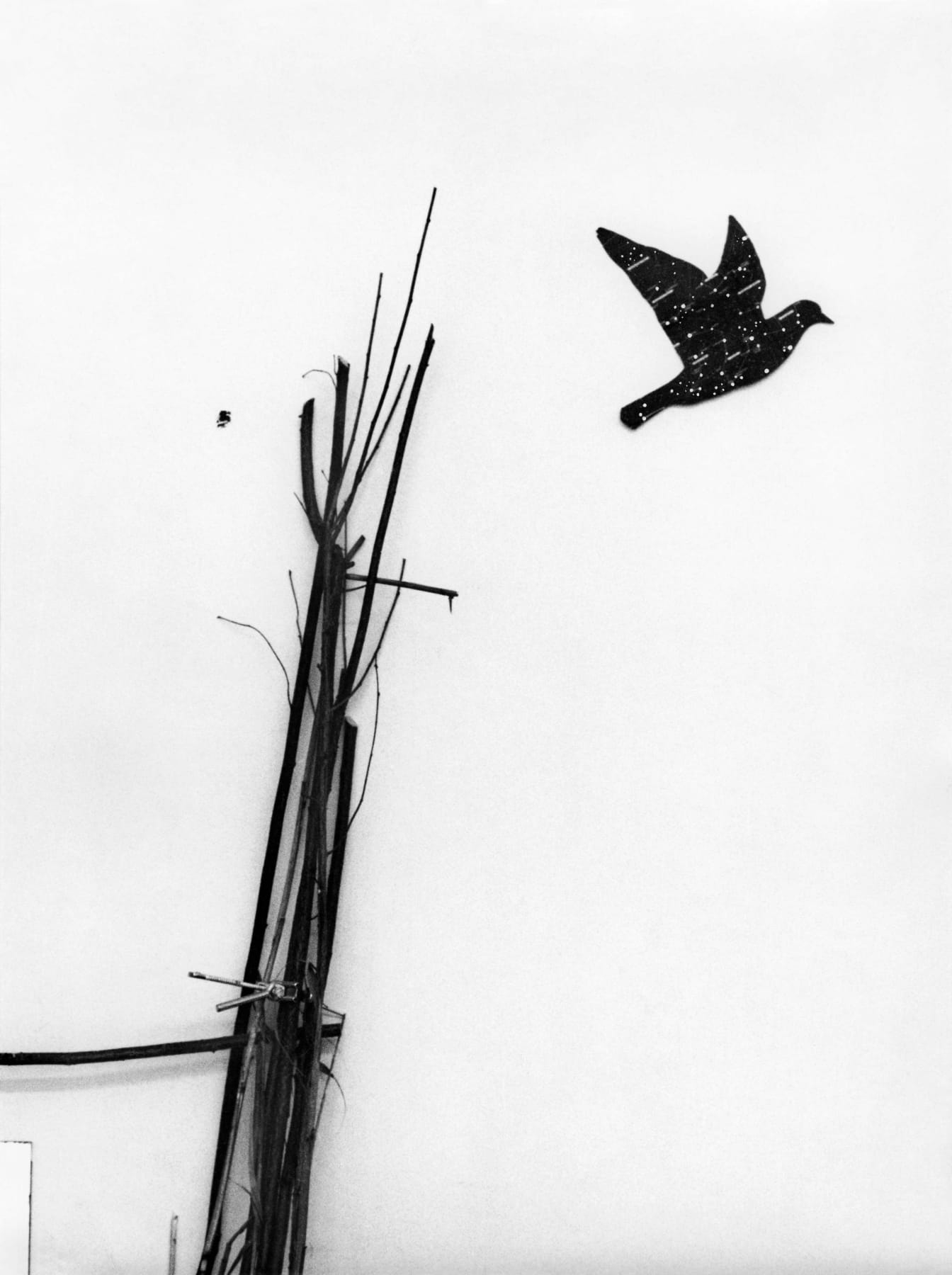 Artwork with actual branches and a cutout of a bird flying away.