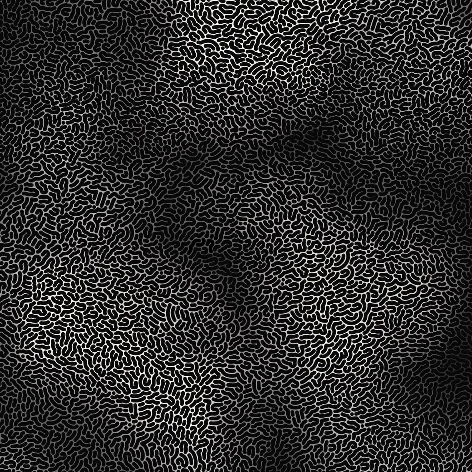 Monochrome Masterpieces