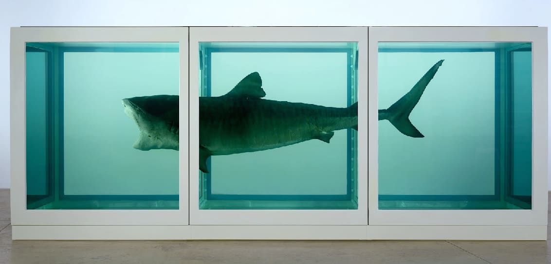 Animals in Contemporary Art, From Hidden Meanings to Political Commentary
