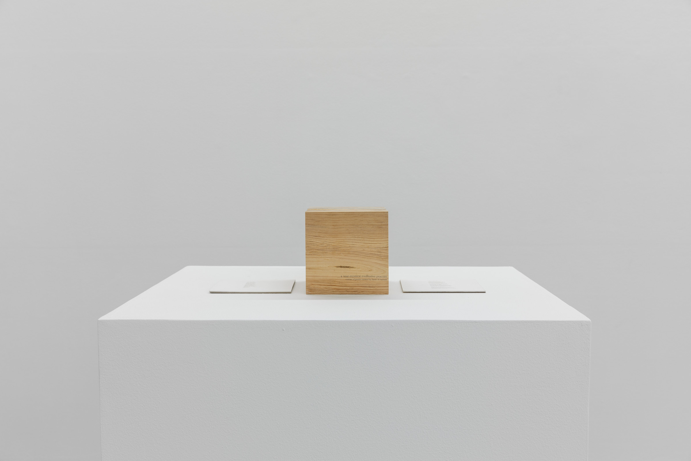 "<span class=""link fancybox-details-link""><a href=""/exhibitions/93/works/artworks2343/"">View Detail Page</a></span><div class=""medium"">Handmade book with language from Agnes Martin </div> <div class=""dimensions"">19.5 x 15 x 15 cm<br /> 7 5/8 x 5 7/8 x 5 7/8 in</div>"