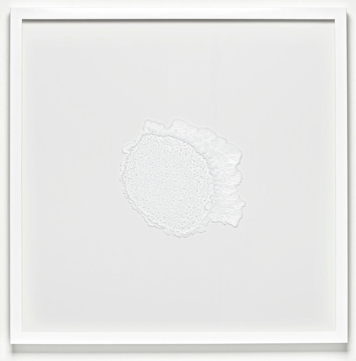 """<span class=""""link fancybox-details-link""""><a href=""""/exhibitions/129/works/artworks9034/"""">View Detail Page</a></span><div class=""""artist""""><strong>RAGNA RÓBERTSDÓTTIR</strong></div><div class=""""title""""><em>Mindscape (salt)</em>, 2013</div><div class=""""medium"""">sea salt on glass</div><div class=""""dimensions"""">72.0 x 72.0 x 4.5 cm<br>28 1/8 x 28 1/8 x 1 1/4 in</div>"""