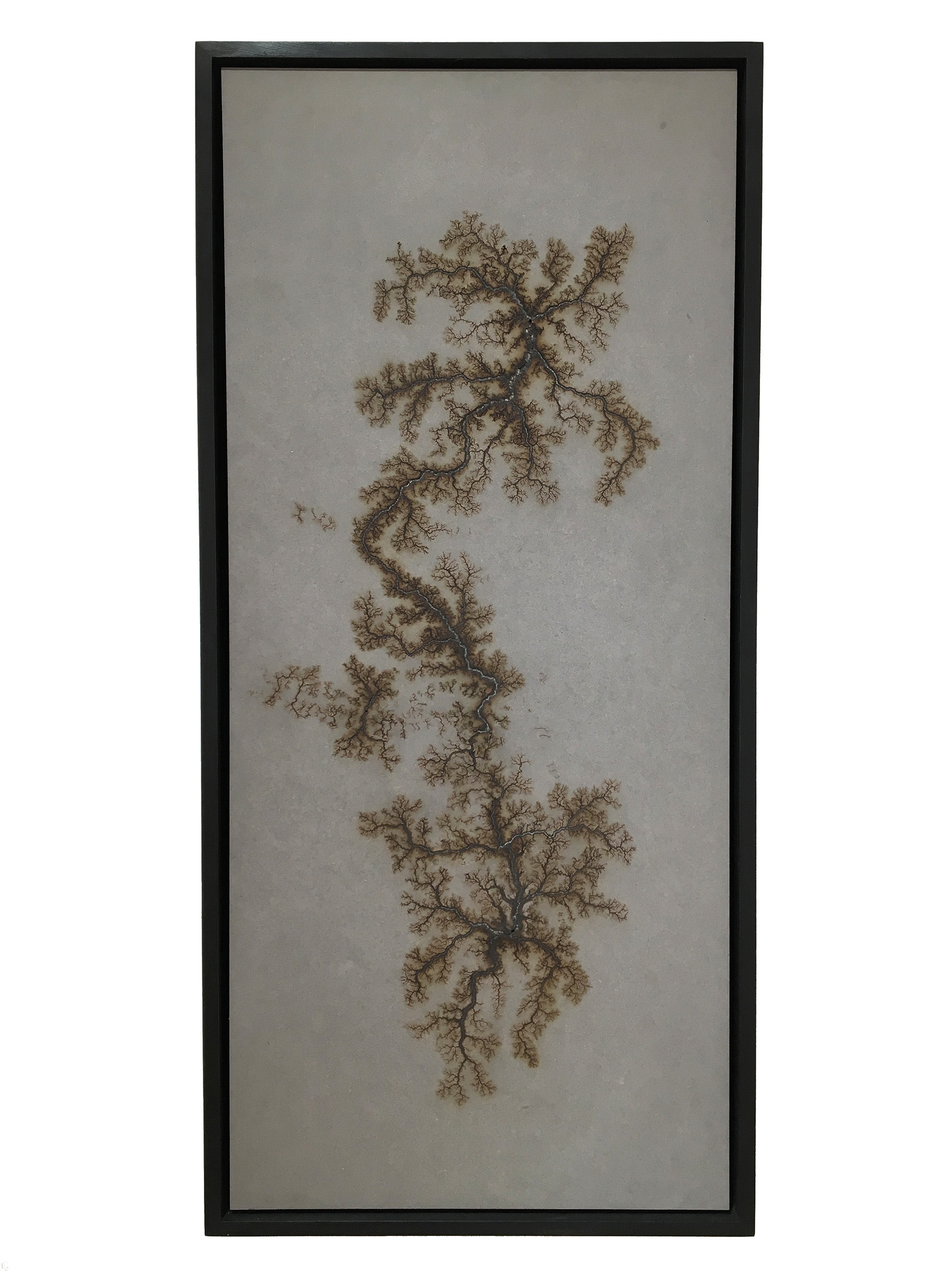 <span class=&#34;link fancybox-details-link&#34;><a href=&#34;/exhibitions/11/works/artworks460/&#34;>View Detail Page</a></span><div class=&#34;artist&#34;><strong>Douglas White</strong></div><div class=&#34;title&#34;><em>Lichtenberg Drawing III</em>, 2017</div><div class=&#34;medium&#34;>10,000 volts on Valchromat</div><div class=&#34;dimensions&#34;>90 x 40 x 4cm</div>