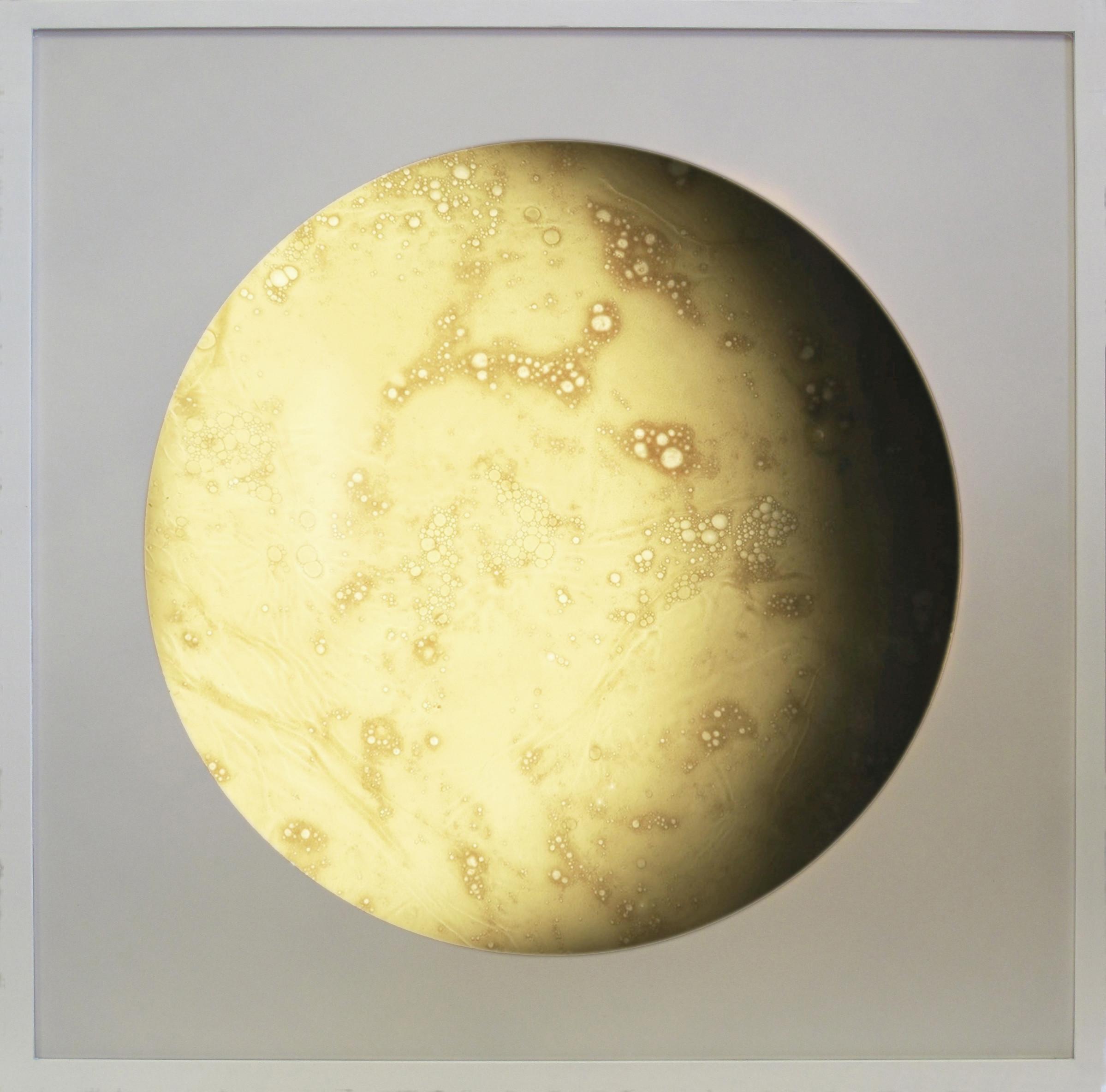 <span class=&#34;link fancybox-details-link&#34;><a href=&#34;/exhibitions/11/works/artworks461/&#34;>View Detail Page</a></span><div class=&#34;artist&#34;><strong>Douglas White</strong></div><div class=&#34;title&#34;><em>White Moon</em>, 2017</div><div class=&#34;medium&#34;>Wax, pigment, lightbox</div><div class=&#34;dimensions&#34;>73 x 73 x 7cm </div>