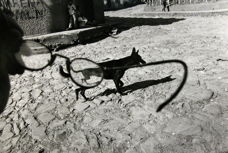 """<span class=""""link fancybox-details-link""""><a href=""""/exhibitions/61/works/artworks6364/"""">View Detail Page</a></span><div class=""""artist""""><strong>Larry Towell</strong></div> b. 1953<div class=""""title""""><em>Perquín, Morazán, El Salvador [dog/glasses]</em>, 1991</div><div class=""""signed_and_dated"""">Artist's blindstamp au recto<br>Signed, titled, and dated, in pencil, au verso<br>Printed in 1998<br></div><div class=""""medium"""">Gelatin silver print</div><div class=""""dimensions"""">16 x 20 inch (40.64 x 50.8 cm)</div>"""