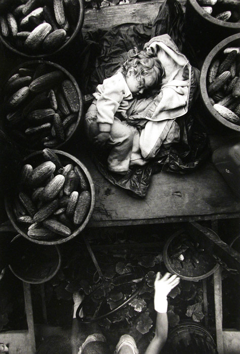 """<span class=""""link fancybox-details-link""""><a href=""""/exhibitions/61/works/artworks13961/"""">View Detail Page</a></span><div class=""""artist""""><strong>Larry Towell</strong></div> b. 1953<div class=""""title""""><em>Kent County, Ontario [Cucumber Baby]</em>, 1996</div><div class=""""signed_and_dated"""">Signed, titled, and dated, in pencil au verso<br>Printed in 2006</div><div class=""""medium"""">Gelatin silver print</div><div class=""""dimensions"""">11 x 14 inch (27.94 x 35.56 cm)</div><div class=""""edition_details""""></div>"""
