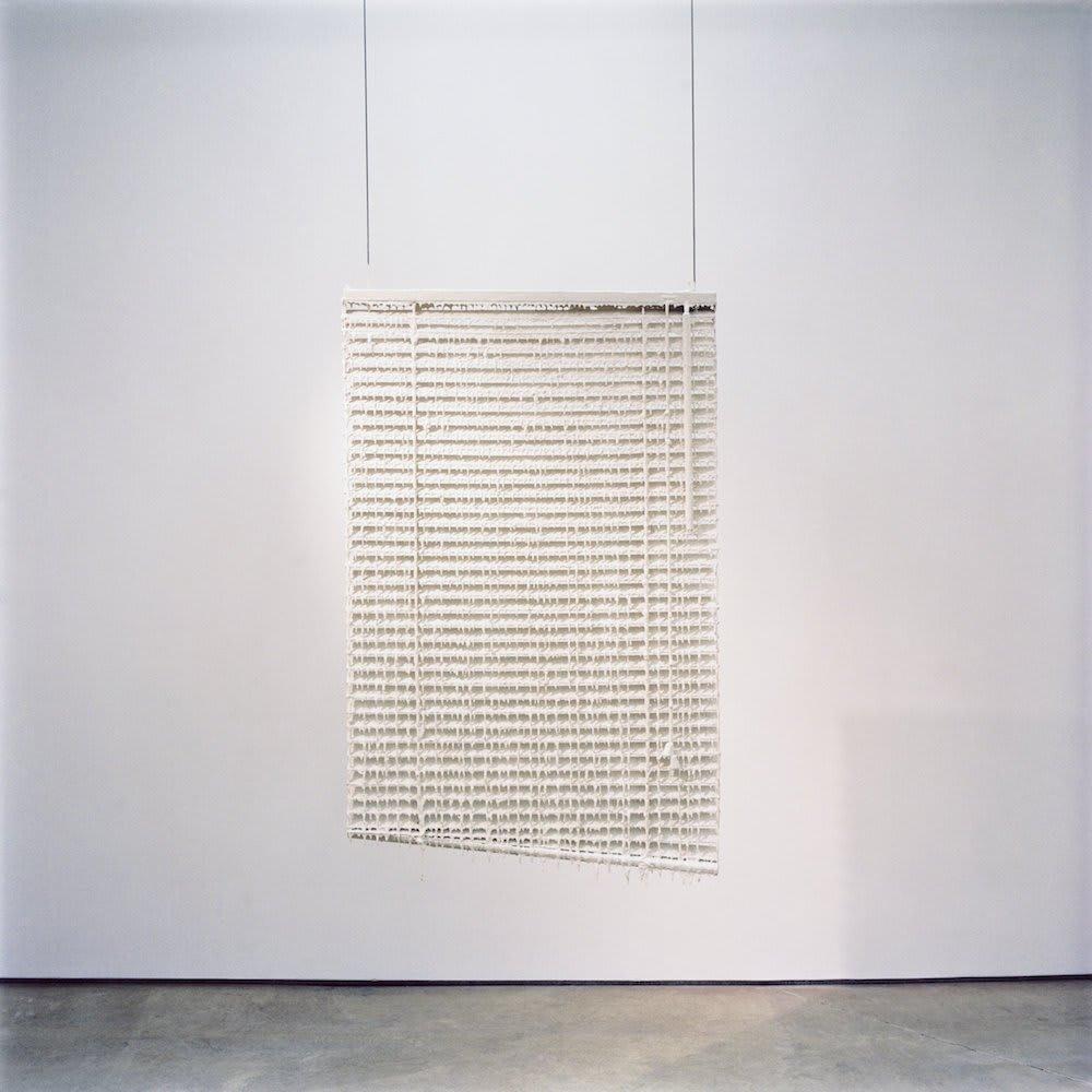 "<span class=""link fancybox-details-link""><a href=""/exhibitions/8/works/artworks425/"">View Detail Page</a></span><div class=""medium"">Venetian Blind, Undercoat Paint, Gloss Paint</div> <div class=""dimensions"">75 x 120 x 3 cms<br />29.55 x 47.28 x 1.18 inches</div>"