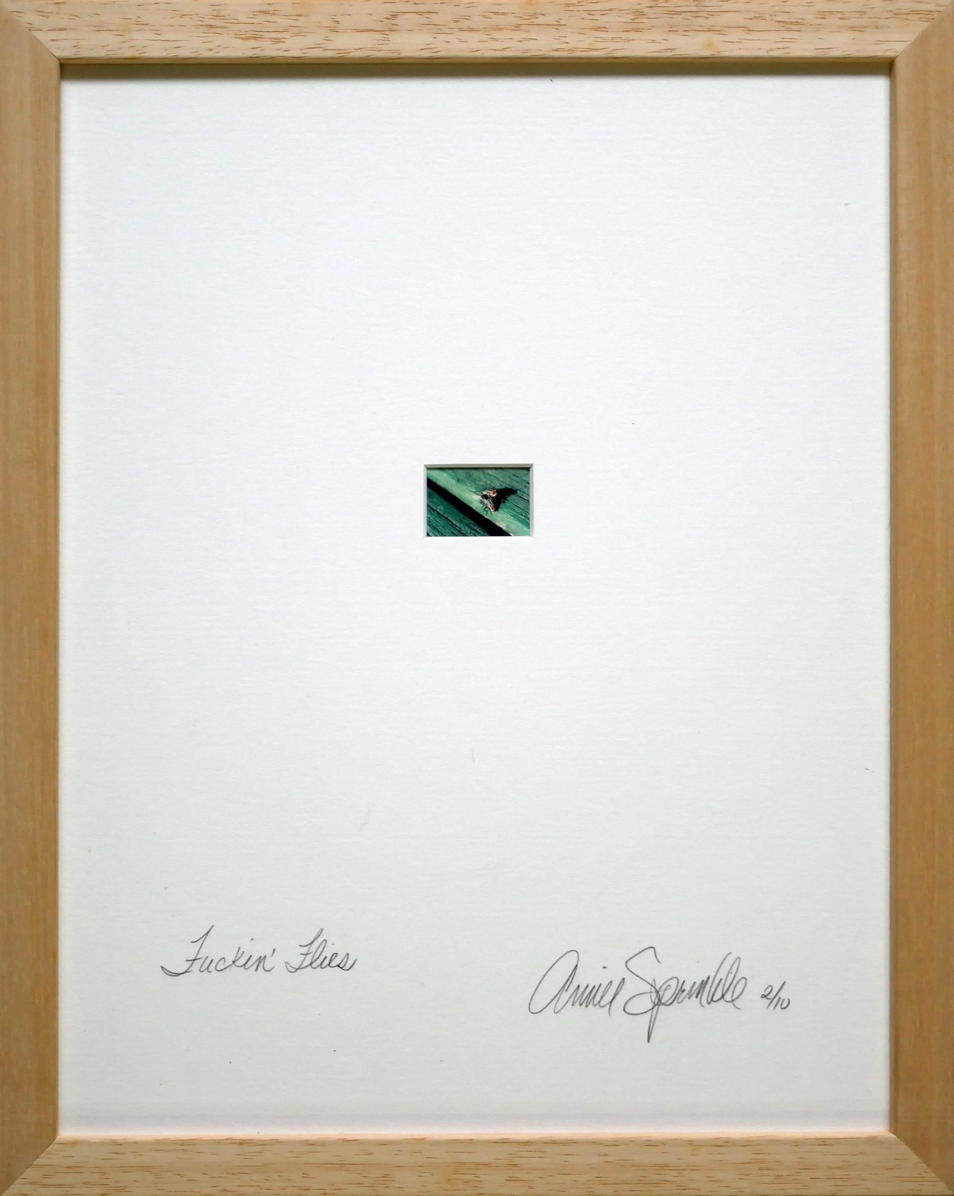 "<span class=""link fancybox-details-link""><a href=""/artists/113-annie-sprinkle/works/1335/"">View Detail Page</a></span><div class=""artist""><strong>Annie SPRINKLE</strong></div> <div class=""title""><em>Fucking flies</em>, 1999</div> <div class=""medium"">C-print on card board</div> <div class=""dimensions"">4 x 5.5 cm<br /> 1 5/8 x 2 1/8 in</div> <div class=""edition_details"">Edition of 10: this is 2/10</div><div class=""copyright_line"">Copyright the artist</div>"