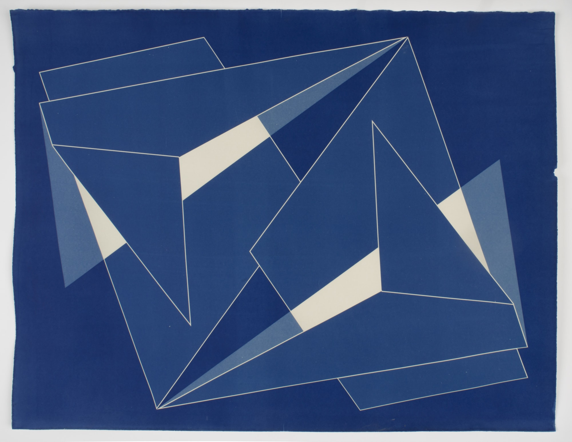 "<span class=""link fancybox-details-link""><a href=""/content/feature/165/artworks690/"">View Detail Page</a></span><div class=""medium"">Cyanotype on cotton rag paper<br /> Framed<br /> Unique</div> <div class=""dimensions"">76.2 x 61 cm<br /> 30 x 24 in</div>"
