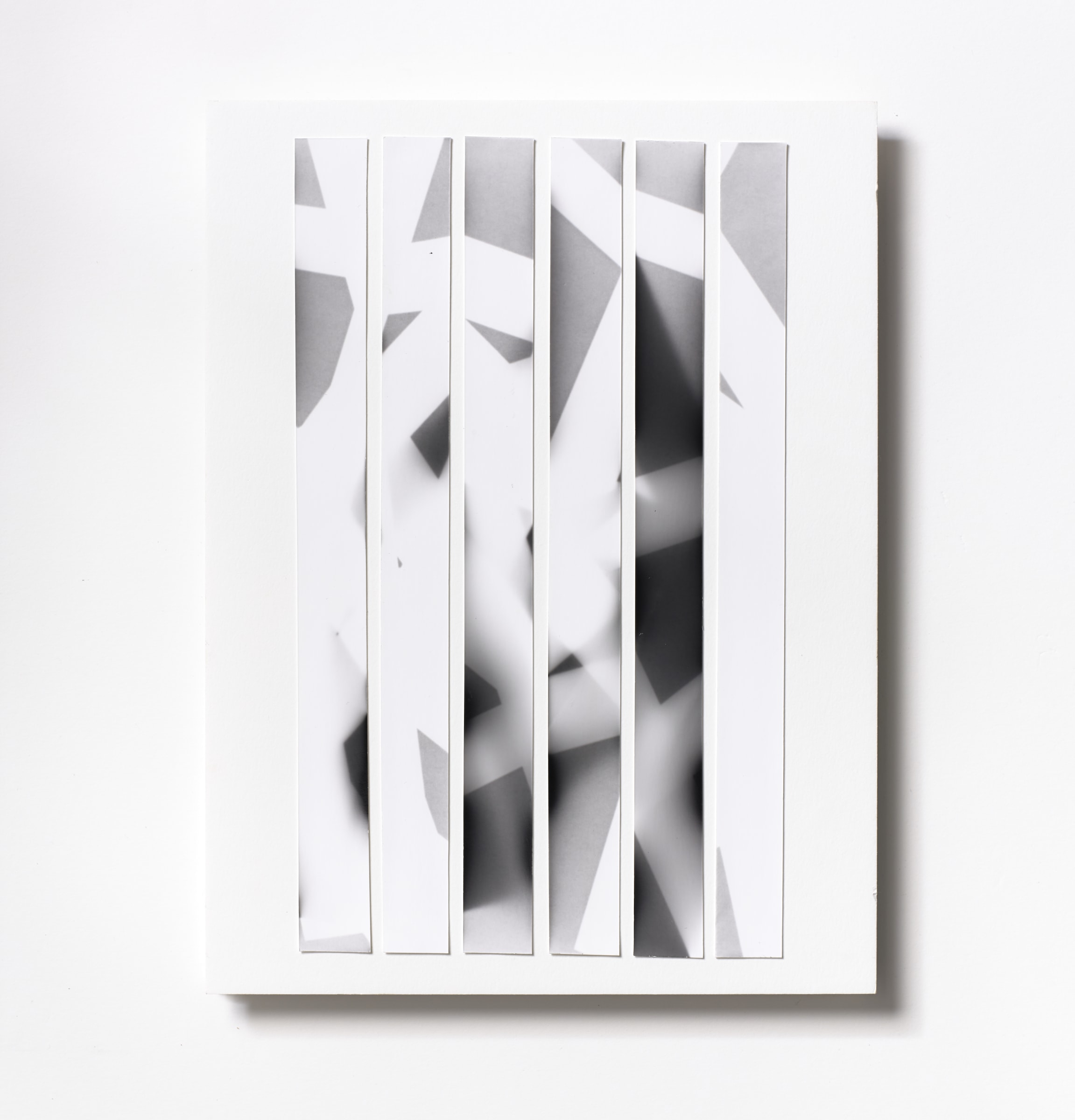 """<span class=""""link fancybox-details-link""""><a href=""""/content/feature/218/artworks546/"""">View Detail Page</a></span><div class=""""medium"""">Silver Gelatin Photogram Print Collage of six handmade 11"""" x 7/8"""" silver gelatin prints from film negatives on a 12 x 9 inch 8-ply museum board<br /> Print only<br /> Unique<br /> </div> <div class=""""dimensions"""">30.5 x 22.9 cm<br /> 12 x 9 in</div>"""