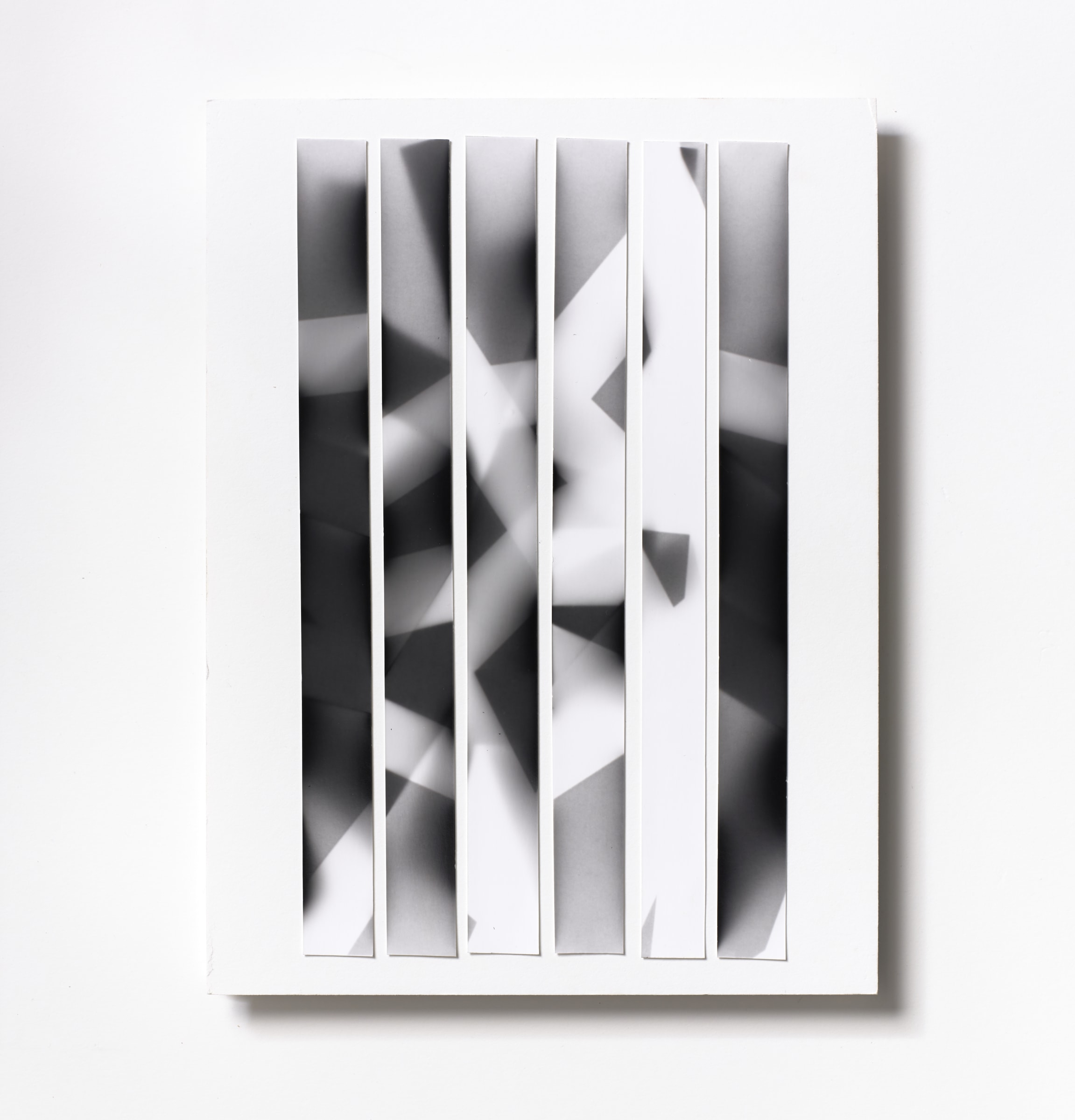 "<span class=""link fancybox-details-link""><a href=""/content/feature/121/artworks548/"">View Detail Page</a></span><div class=""medium"">Silver Gelatin Photogram Print Collage of six handmade 11"" x 7/8"" silver gelatin prints from film negatives on a 12 x 9 inch 8-ply museum board<br /> Print only<br /> Unique</div> <div class=""dimensions"">30.5 x 22.9 cm<br /> 12 x 9 in</div>"