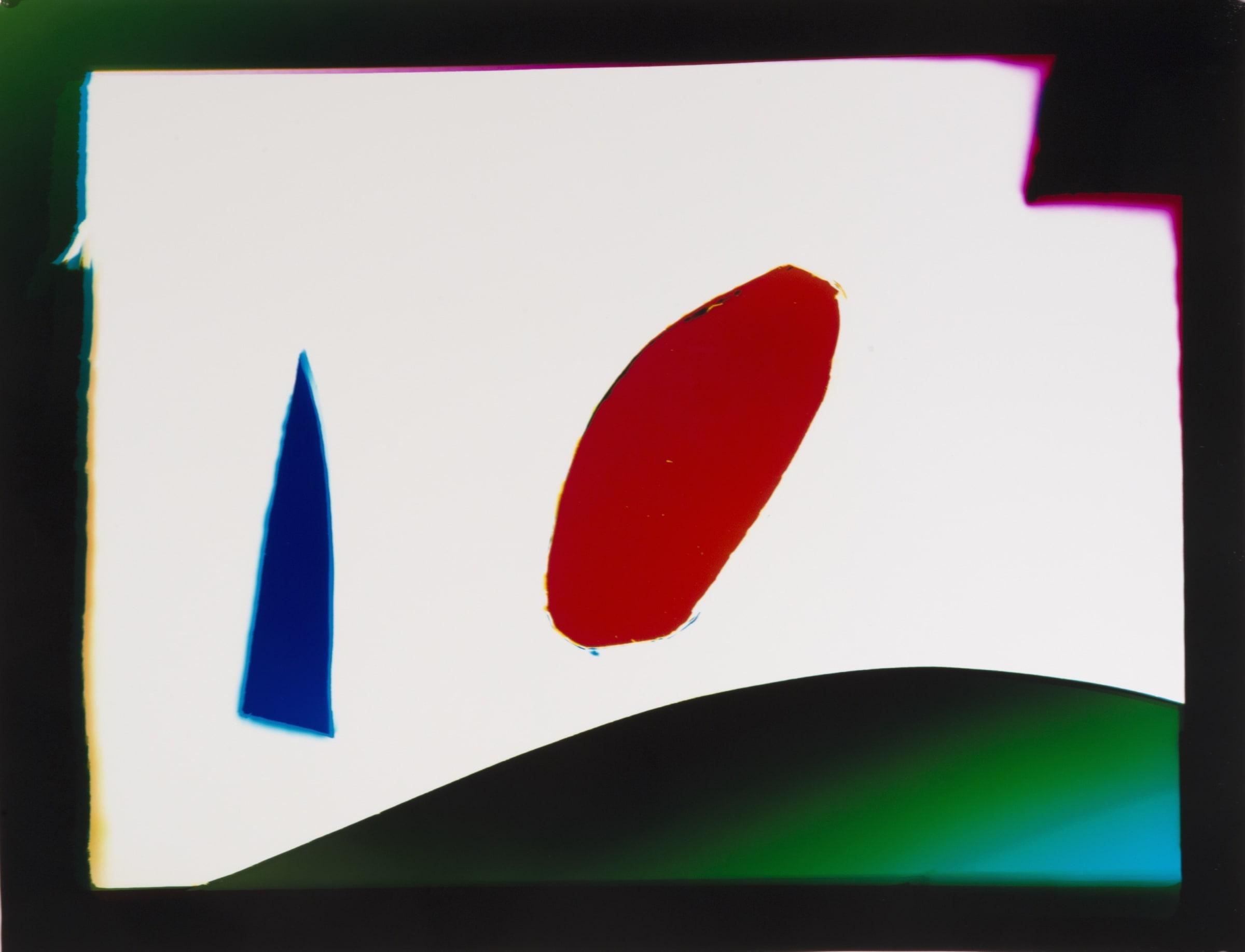 "<span class=""link fancybox-details-link""><a href=""/exhibitions/11/works/artworks119/"">View Detail Page</a></span><div class=""artist""><strong>Liz Nielsen</strong></div><div class=""title""><em>Day at the Park</em>, 2018</div><div class=""signed_and_dated"">Signed, titled and dated on artist's label</div><div class=""medium"">Analogue Chromogenic Photogram on Fujiflex, Unique</div><div class=""dimensions"">58 x 44.9 cm<br>18 x 23 in</div>"