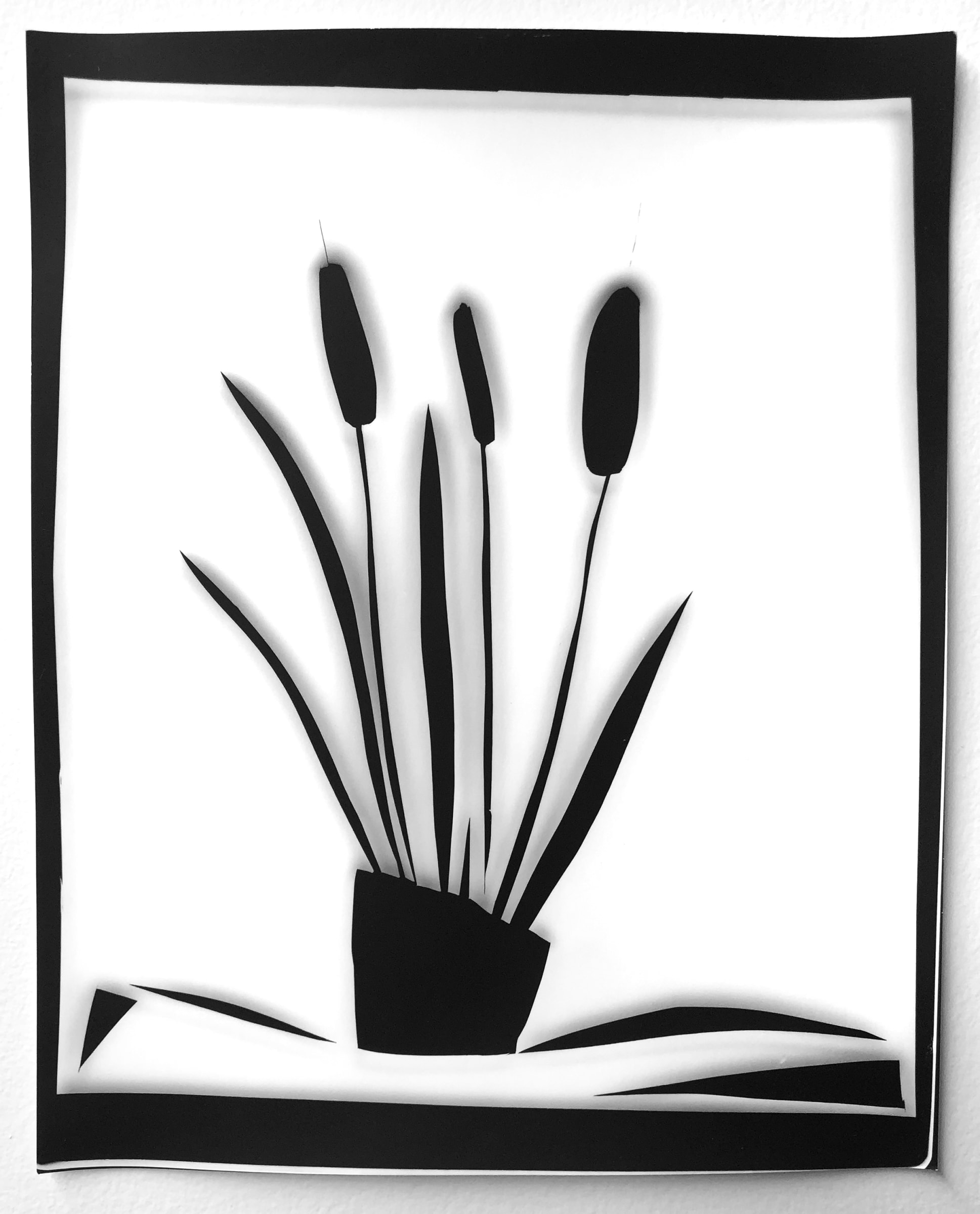 """<span class=""""link fancybox-details-link""""><a href=""""/artists/26-liz-nielsen/works/1044-liz-nielsen-cattail-plant-2020/"""">View Detail Page</a></span><div class=""""artist""""><strong>Liz Nielsen</strong></div> <div class=""""title""""><em>Cattail Plant</em>, 2020</div> <div class=""""medium"""">Analogue silver gelatin photogram on Ilford Matte<br /> Framed in a handmade white box frame with museum glass<br /> Unique</div> <div class=""""dimensions"""">25.4 x 20.3 cm<br /> 10 x 8 in</div><div class=""""copyright_line"""">Copyright Liz Nielsen</div>"""