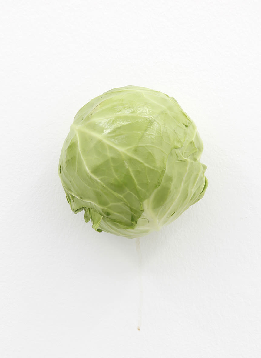 "<span class=""link fancybox-details-link""><a href=""/exhibitions/152/works/artworks12727/"">View Detail Page</a></span><div class=""artist""><strong>KARIN SANDER</strong></div><div class=""title""><em>Cabbage (Kitchen Pieces)</em>, 2011 / 2016</div><div class=""medium"">cabbage, steel nail</div>"
