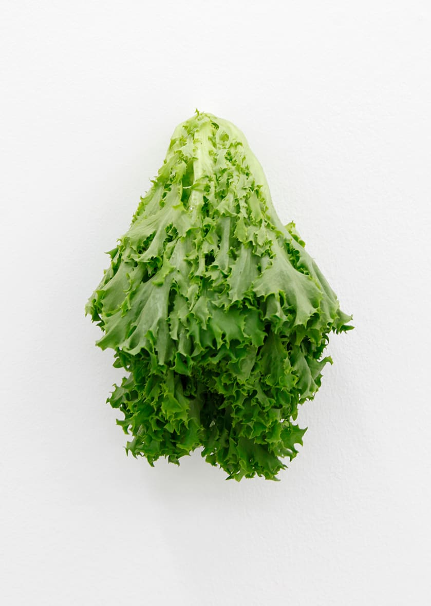 "<span class=""link fancybox-details-link""><a href=""/exhibitions/152/works/artworks12742/"">View Detail Page</a></span><div class=""artist""><strong>KARIN SANDER</strong></div><div class=""title""><em>Lettuce (Kitchen Pieces)</em>, 2011 / 2016</div><div class=""medium"">endive, steel nail</div>"