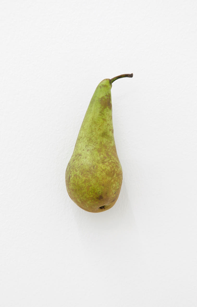 "<span class=""link fancybox-details-link""><a href=""/artists/40-karin-sander/works/12747/"">View Detail Page</a></span><div class=""artist""><strong>KARIN SANDER</strong></div> <div class=""title""><em>Pear (Kitchen Pieces)</em>, 2011 / 2016</div> <div class=""medium"">pear, steel nail</div> <div class=""dimensions"">dimensions variable</div>"