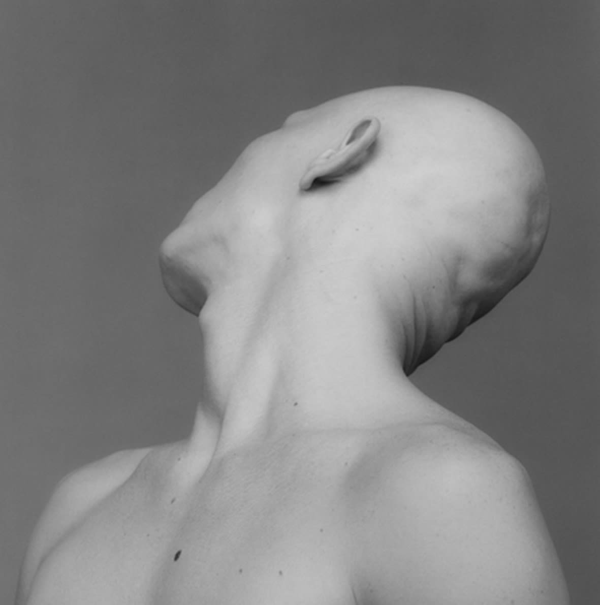 """<span class=""""link fancybox-details-link""""><a href=""""/exhibitions/120/works/artworks7751/"""">View Detail Page</a></span><div class=""""artist""""><strong> Robert Mapplethorpe</strong></div><div class=""""title""""><em>Robert Sherman</em>, 1983 / printed 1993</div><div class=""""signed_and_dated"""">unsigned</div><div class=""""medium"""">gelatin silver print</div><div class=""""dimensions"""">image: 39.10 x 38.50 cm<br>framed: 62.2 x 59.5 cm</div><div class=""""edition_details""""></div>"""