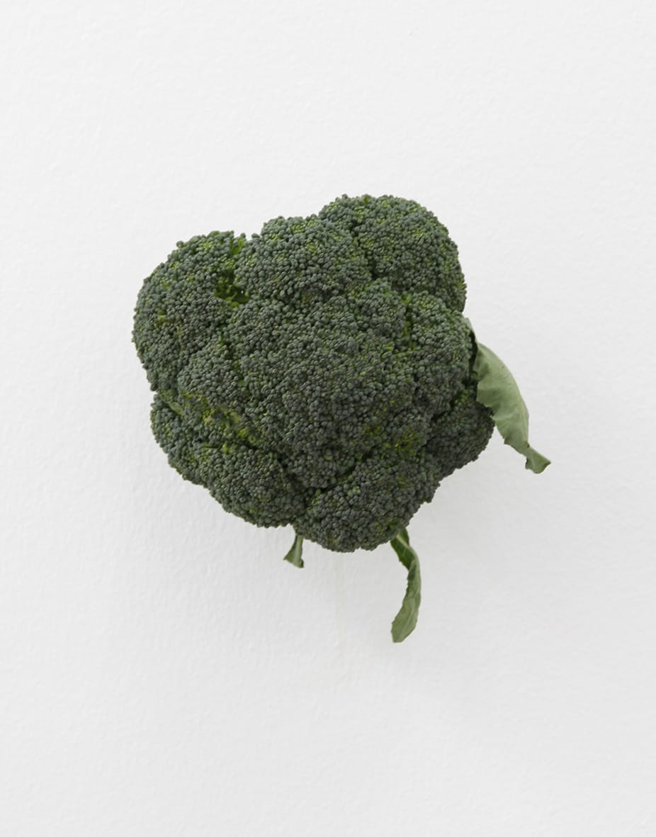 "<span class=""link fancybox-details-link""><a href=""/exhibitions/152/works/artworks12734/"">View Detail Page</a></span><div class=""artist""><strong>KARIN SANDER</strong></div><div class=""title""><em>Broccoli (Kitchen Pieces)</em>, 2011 / 2016</div><div class=""medium"">broccoli, steel nail</div>"