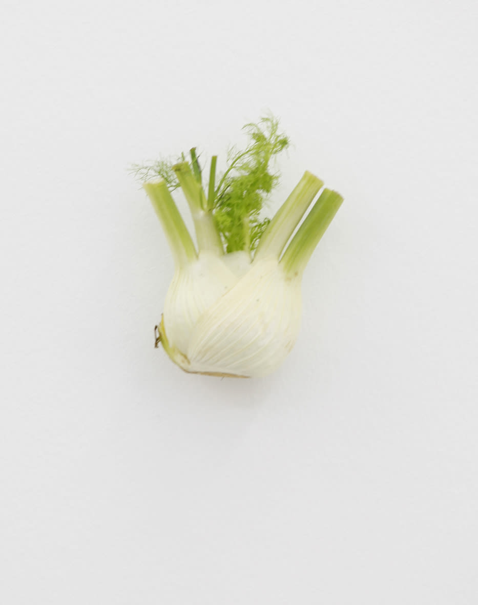 "<span class=""link fancybox-details-link""><a href=""/exhibitions/152/works/artworks12728/"">View Detail Page</a></span><div class=""artist""><strong>KARIN SANDER</strong></div><div class=""title""><em>Fennel (Kitchen Pieces)</em>, 2011 / 2016</div><div class=""medium"">fennel, steel nail</div>"